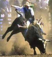 bull-blowout